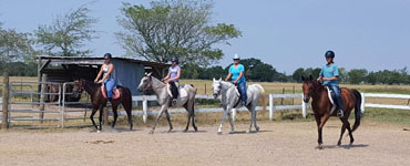 Royal Legend Equestrian Riding and Training Interns