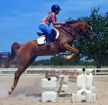 Hunter Jumper Lessons and Training