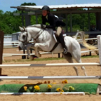 Hunter Jumper Lessons